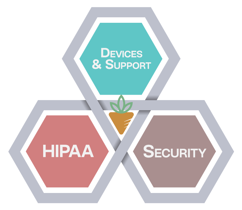CareIT Healthcare IT Services Package